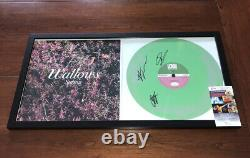 Wallows Full Band Signed Spring Ep Vinyl Record Album Autograph Dylan Minnette