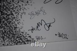 Wilco Signed Autographed SKY BLUE SKY Vinyl Record Album Jeff Tweedy +5 COA